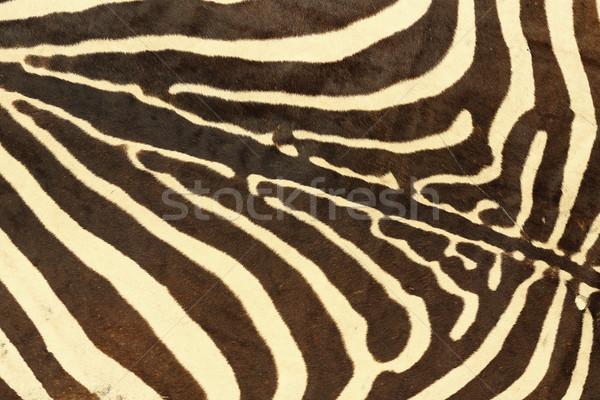 抽象的な テクスチャ シマウマ 毛皮 本当の デザイン ストックフォト © taviphoto