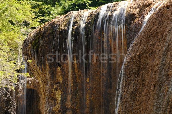 Részlet természetes vízesés vízesés tavasz kő Stock fotó © taviphoto