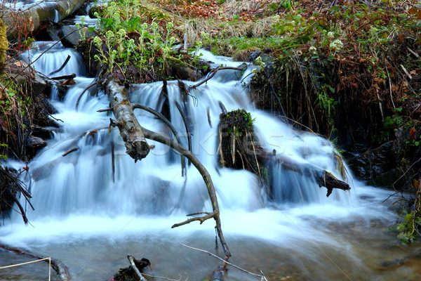 waterfall in the mountains Stock photo © taviphoto