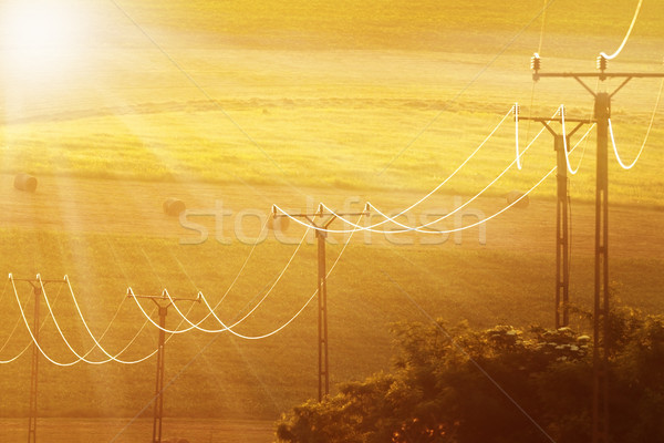 красивой солнечный свет полях электроэнергии линия передний план Сток-фото © taviphoto