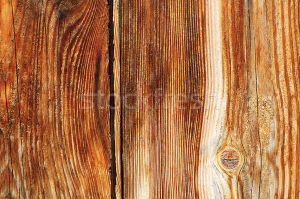 Enfeitar textura naturalismo padrão madeira Foto stock © taviphoto