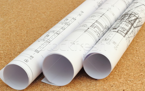 rolled blueprints Stock photo © taviphoto