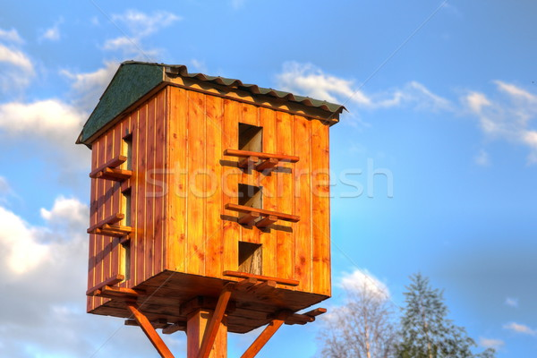 pigeon house Stock photo © taviphoto