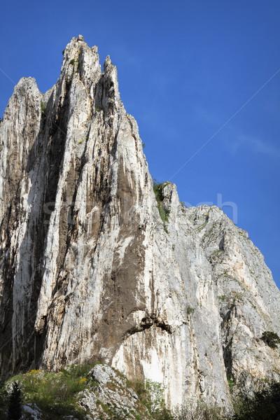 big limestone ridge Stock photo © taviphoto