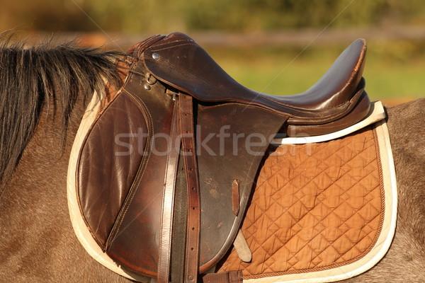 At eyer geleneksel kahverengi kısrak spor Stok fotoğraf © taviphoto