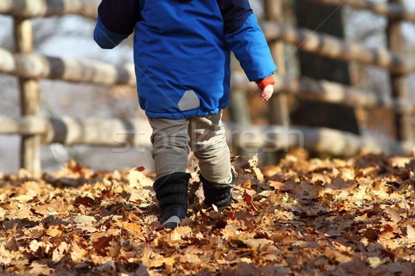 child walking on rural road Stock photo © taviphoto