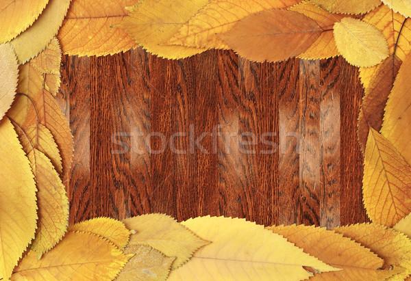 Fából készült cseresznye levelek öreg mahagóni felület Stock fotó © taviphoto