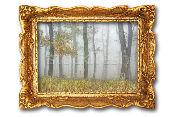 image with misty forest on ancient picture frame Stock photo © taviphoto