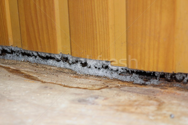 effects of plastic paneling on old house Stock photo © taviphoto
