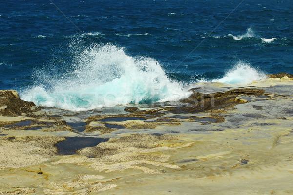 splashing waves Stock photo © taviphoto