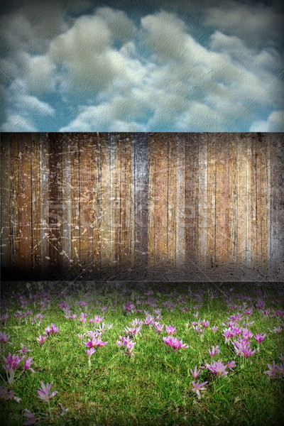 abstract distressed garden backdrop Stock photo © taviphoto