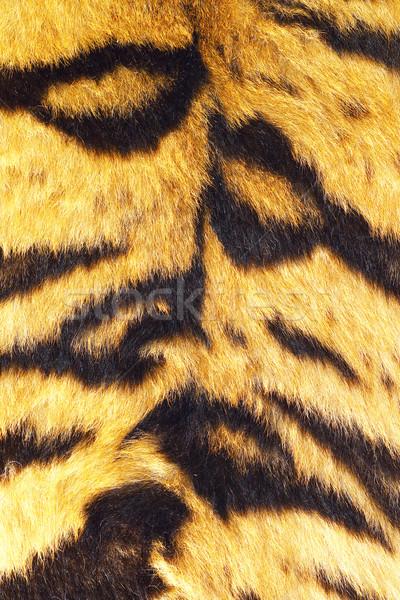 тигр реальный мех красивой Сток-фото © taviphoto