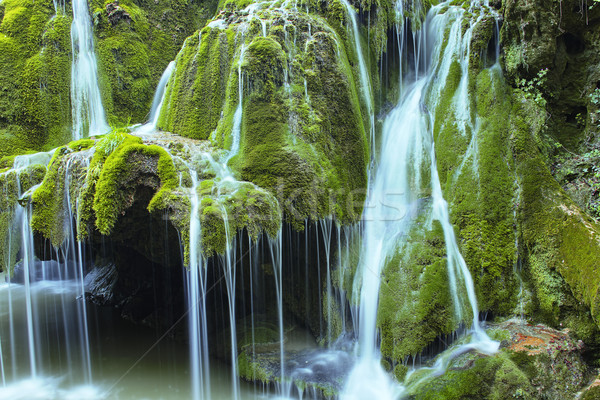 Güzel çağlayan çağlayan su ağaç bahar Stok fotoğraf © taviphoto