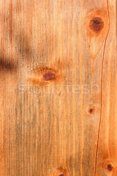 spruce beige plank texture Stock photo © taviphoto