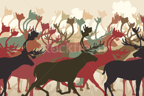 Reindeer herd Stock photo © Tawng
