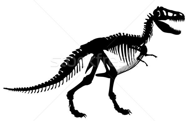 T rex skeleton Stock photo © Tawng