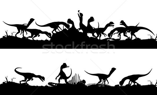 Twee vector silhouetten Stockfoto © Tawng