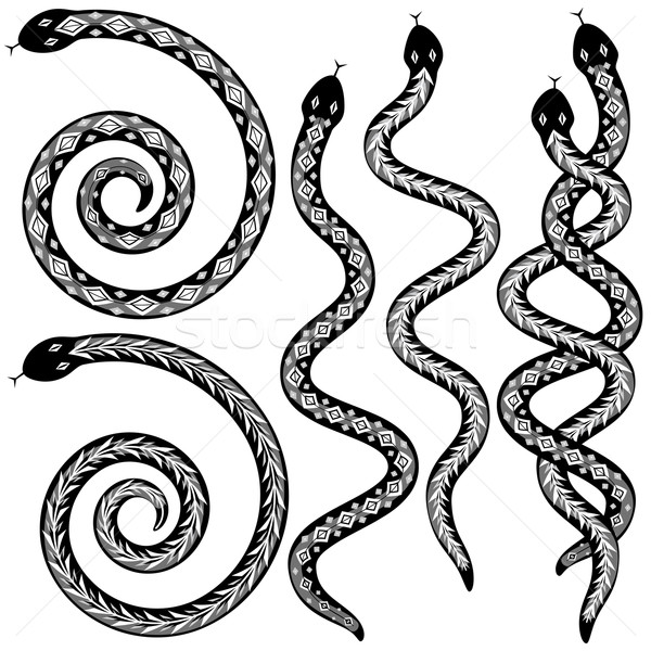 Serpent dessins vecteur serpents Photo stock © Tawng