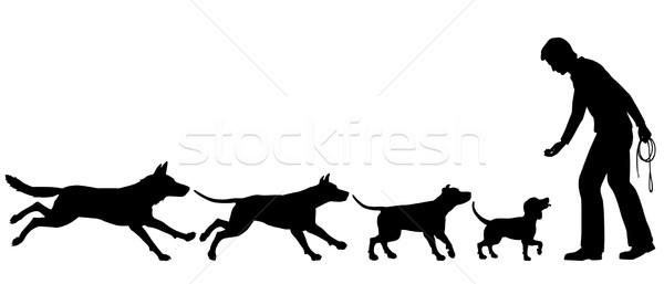 Chien vecteur silhouettes noir silhouette Photo stock © Tawng