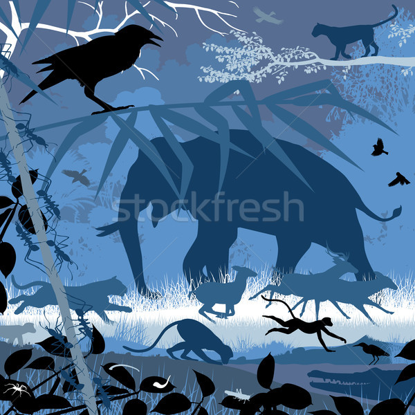Asian wildlife in blue Stock photo © Tawng