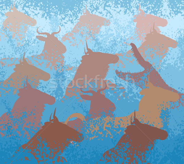 Wildebeest swimming river Stock photo © Tawng