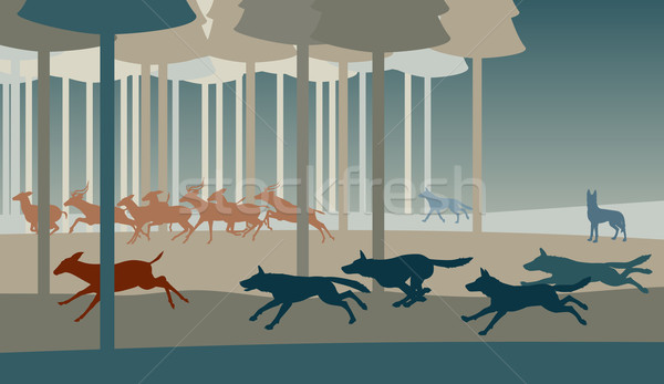 Wolf hunt Stock photo © Tawng