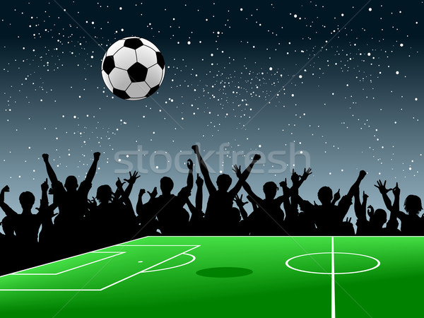 Soccer pitch Stock photo © Tawng