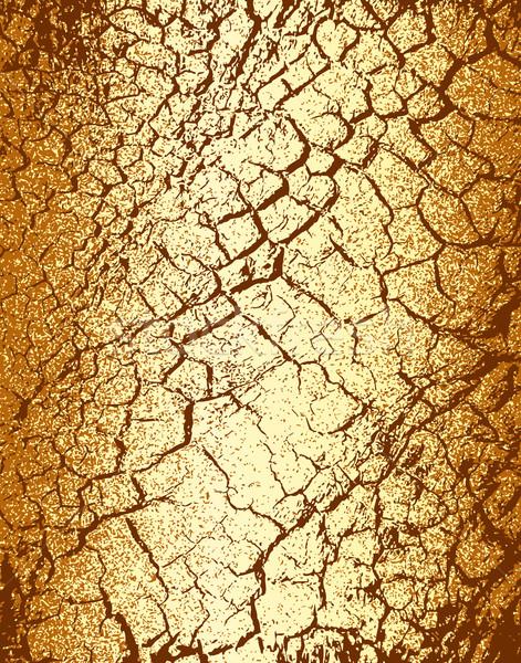 Marrom árvore casca textura padrão Foto stock © Tawng