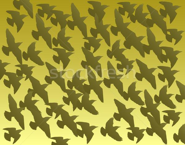 Vecteur oiseaux fond silhouette volée Photo stock © Tawng