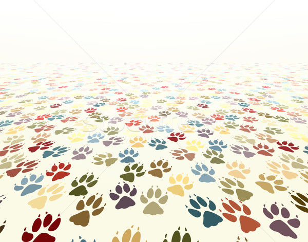 Paw floor Stock photo © Tawng