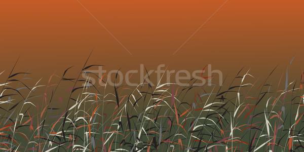 Vecteur coloré nature rouge plantes Photo stock © Tawng
