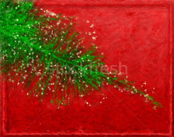 Christmas jodła malarstwo zielone oddziału blask Zdjęcia stock © Tawng