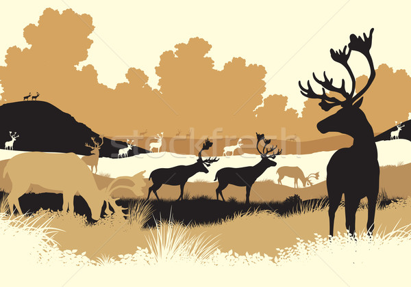 Reindeer tundra Stock photo © Tawng