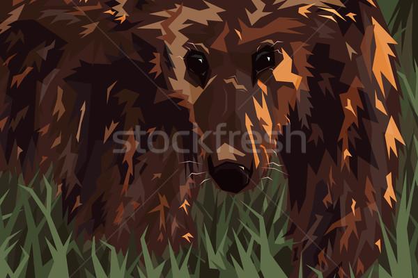 Grizzly szerkeszthető grizzly medve zöld vektor illusztráció Stock fotó © Tawng