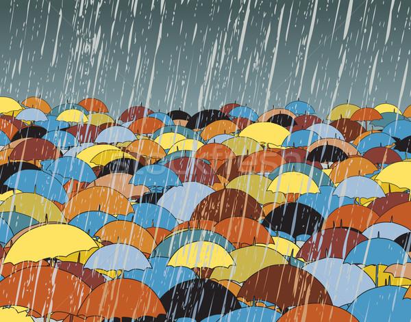 Umbrellas Stock photo © Tawng