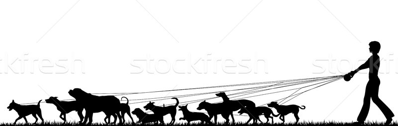 Stock photo: Female dog walker