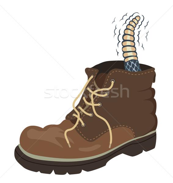 Rattler boot Stock photo © Tawng