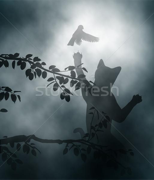 Gato ave canora pequeno jardim Foto stock © Tawng