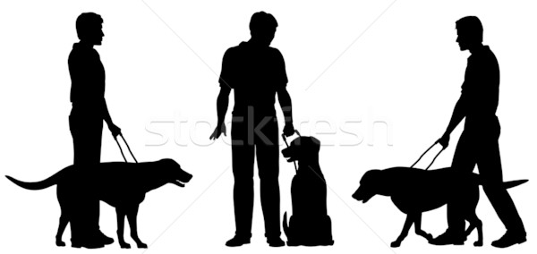 Guide dog Stock photo © Tawng