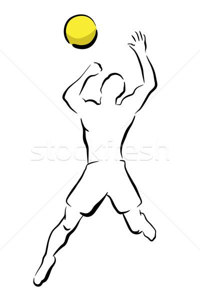Volleyball smash Stock photo © Tawng