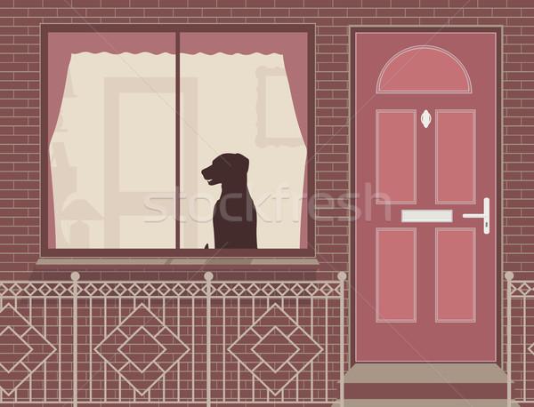 ウィンドウ 犬 見える 外に 家 ストックフォト © Tawng