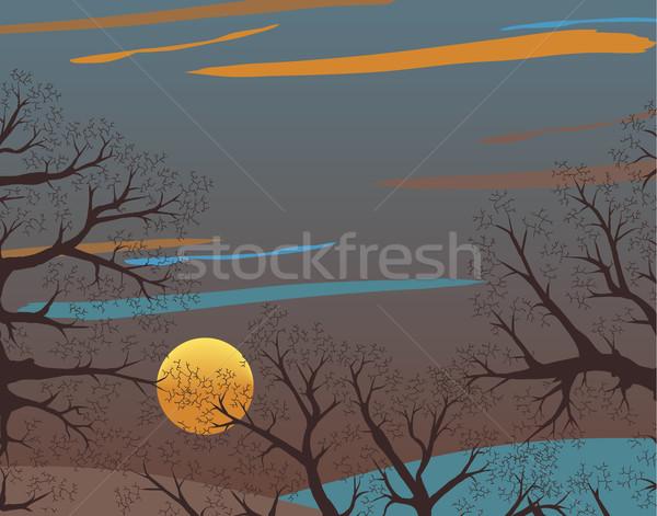 Hiver bois coucher du soleil espace de copie ciel Photo stock © Tawng