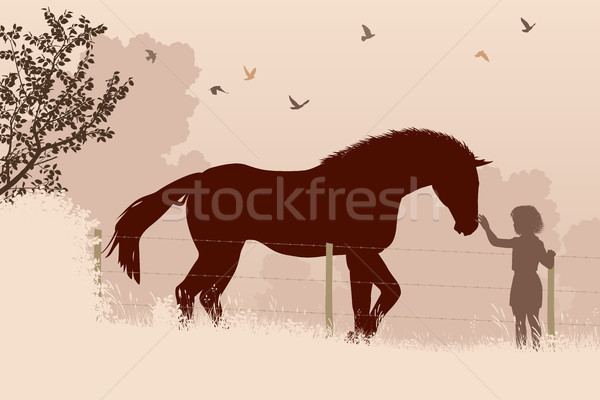 Horse and girl Stock photo © Tawng
