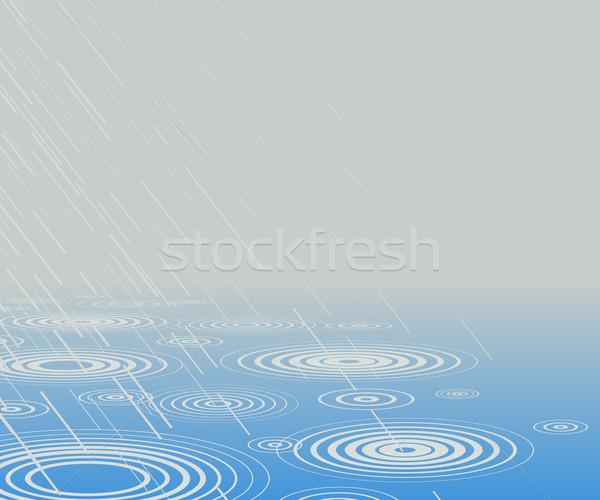 Rainpool Stock photo © Tawng