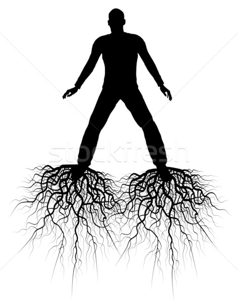 Roots Stock photo © Tawng
