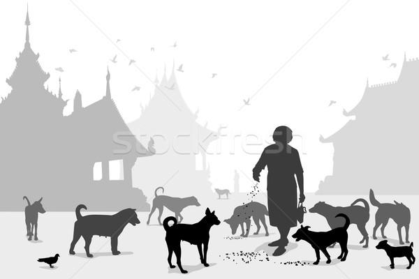 Templo cão cuidador mulher Foto stock © Tawng