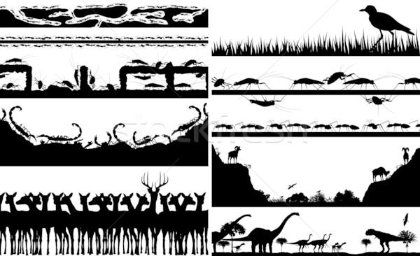 животного набор вектора индивидуальный Сток-фото © Tawng