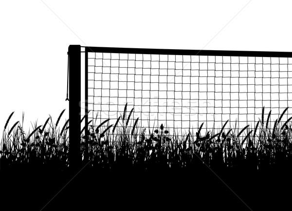 Grasscourt tennis season Stock photo © Tawng
