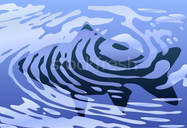 Rippled fish Stock photo © Tawng