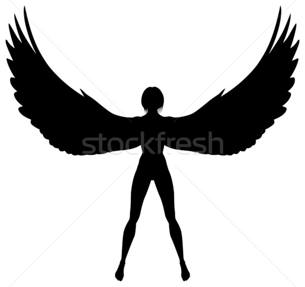 Winged woman Stock photo © Tawng